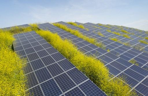 Las últimas noticias de energía eléctrica en Latinoamérica