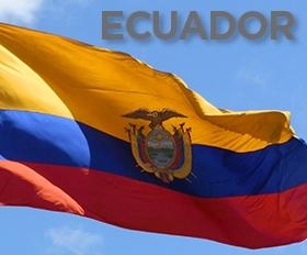 Former Ecuadorian minister jailed in Odebrecht probe