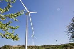Parques eólicos dominicanos obtienen permisos para pruebas
