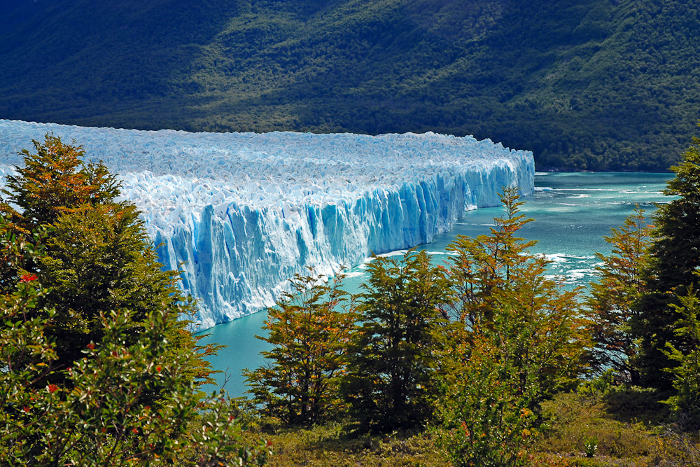 Chile sets 2050 goal to be carbon neutral