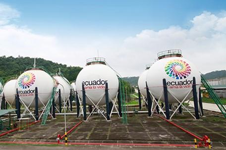 Ecuador elige a extitular de regulador mexicano para asesorar fusión